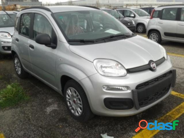 FIAT Panda benzina in vendita a Napoli (Napoli) 0