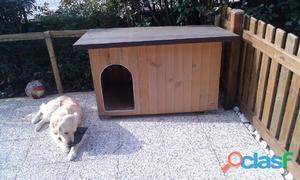 Cani legno clasf for Cancelletto per cani da esterno