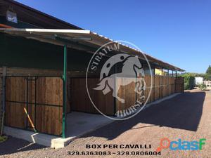 Box Cavalli Legno Animali Marzo Clasf