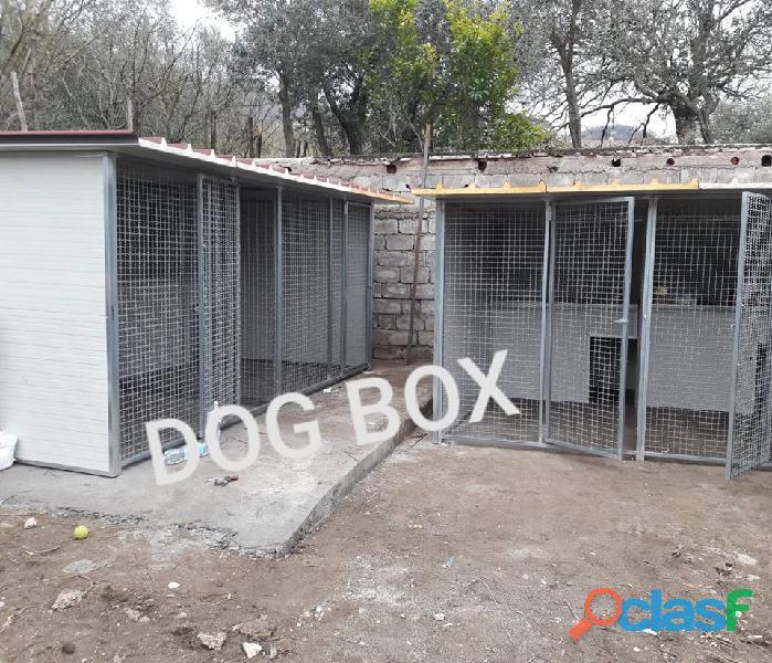 Box per cani coibentato