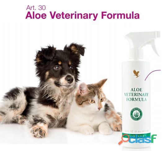 Aloe vera prodotti della forever per i tuoi animali