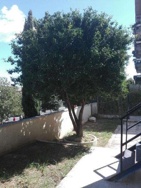 Monterotondo bilocale completamente ristrutturato con ampio