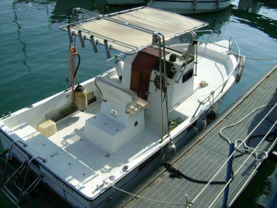 Pilotina fisherman 23 delfino guida senza patente
