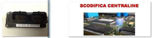 Servizio scodifiche marelli 59f/5af/4af/5nf 59m/5afducati