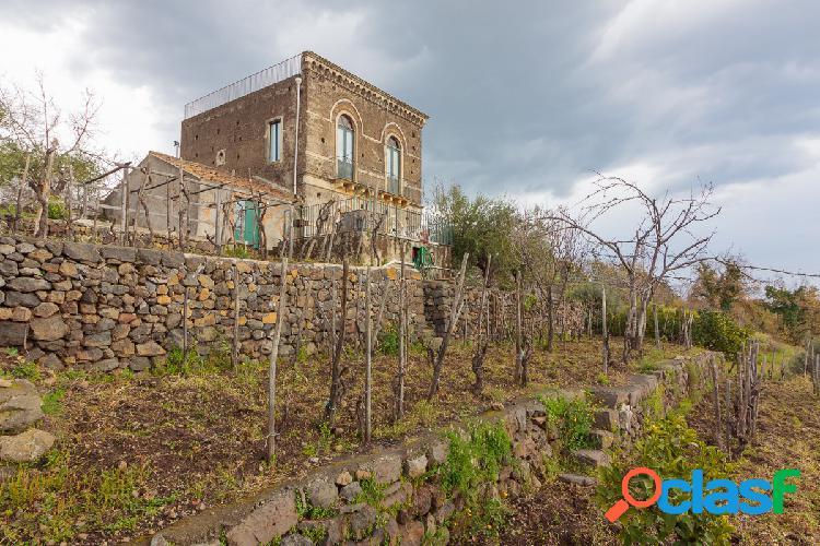 Villa vista mare e terreno agricolo con vigneto