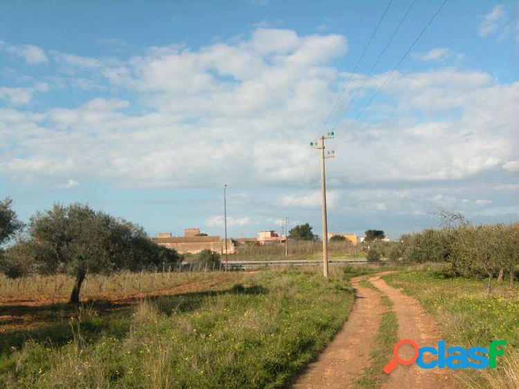 Terreno agricolo 4920mq fronte strada