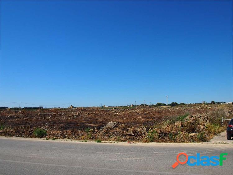 Terreno agricolo di 26.770mq fronte strada