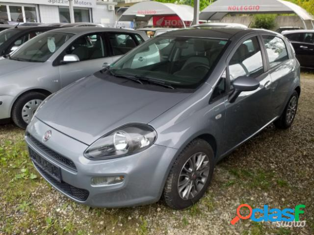 Fiat punto evo diesel in vendita a rende (cosenza)