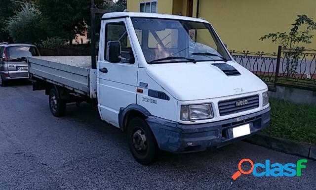 Iveco daily diesel in vendita a saltara (pesaro-urbino)
