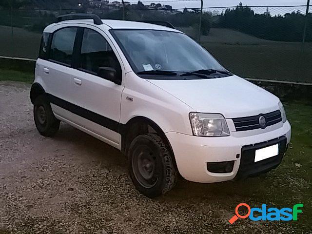 Fiat panda diesel in vendita a saltara (pesaro-urbino)