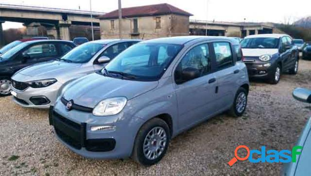 Fiat panda gpl in vendita a montella (avellino)