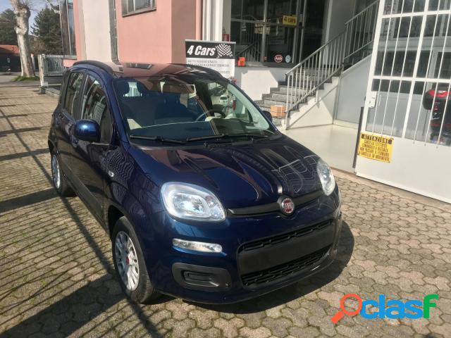 Fiat panda benzina in vendita a caronno pertusella (varese)