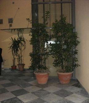 Mansarda 5 locali reggio nell'emilia centro storico