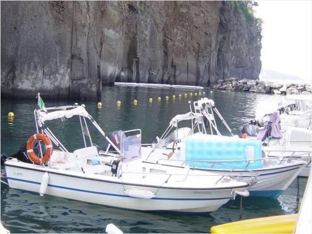 Barca a motorefiart mare fiart 5 brezza cv40 anno1999