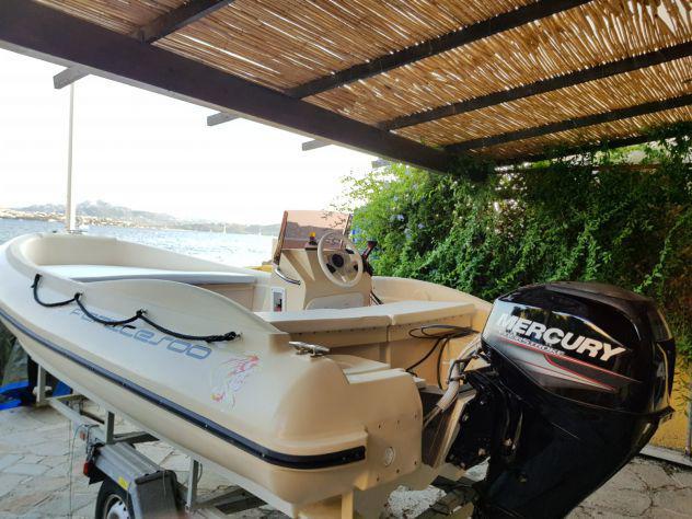 Barca in polietilene maeco con motore mercury