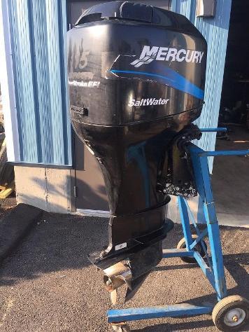 Moto d'acqua mercury f115cv efi