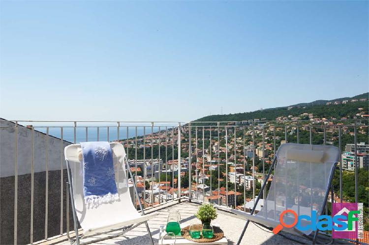 Ampio appartamento con terrazza e vista mare