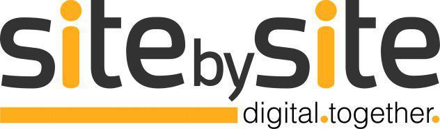 Digital sales manager