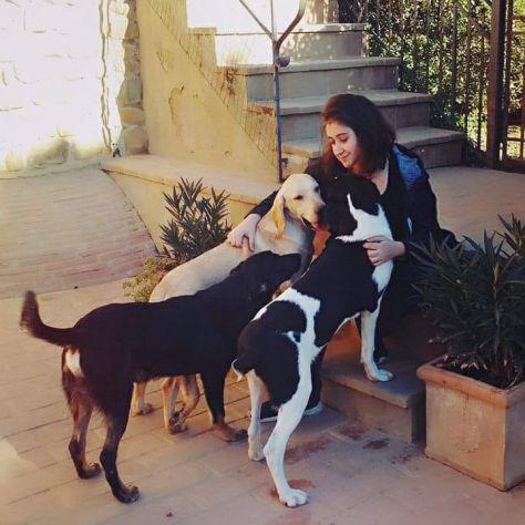 Dog e cat sitter esperta a firenze