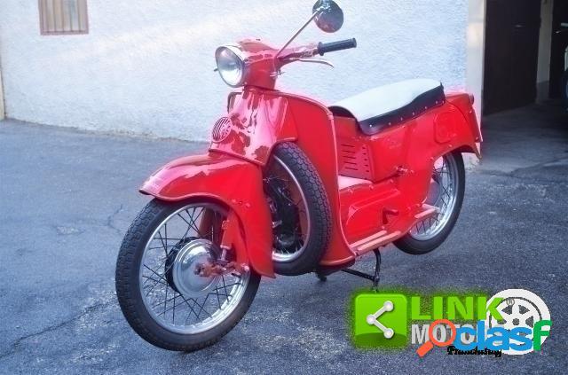 Moto Guzzi Galletto 192 benzina in vendita a Prato (Prato)
