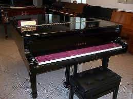 Pianista concertista per lezioni ad ogni livello di