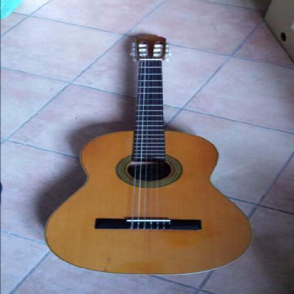 incontri chitarre Gibson Vintage datazione di un sopravvissuto abuso domestico