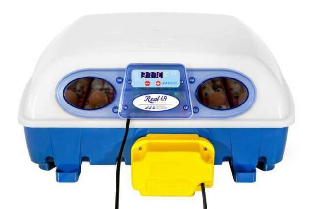 Incubatrice borotto real 49 automatica