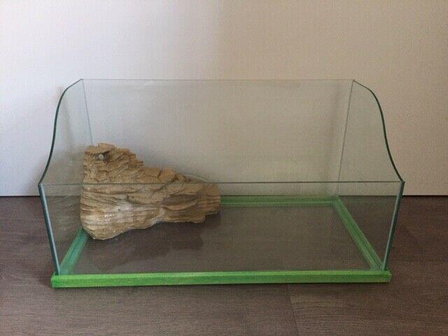 Tartarughiera cascata animali agosto clasf for Filtro tartarughiera