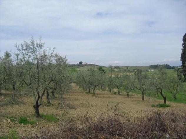 Terreno agricolo in vendita a cerreto guidi 10000 mq rif: