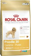 Royal canin mini barboncino**poodle** kg. 1.5