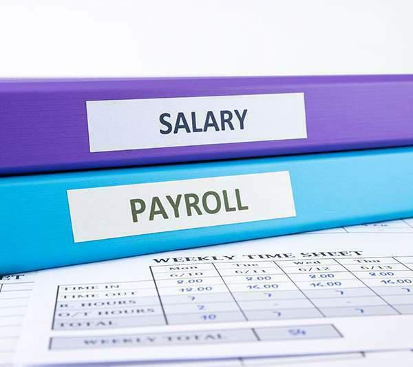 Corso on line di paghe e contributi