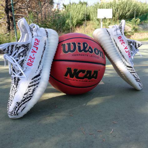 Adidas yeezy boost 350 beluga zebra bred oreo off-white