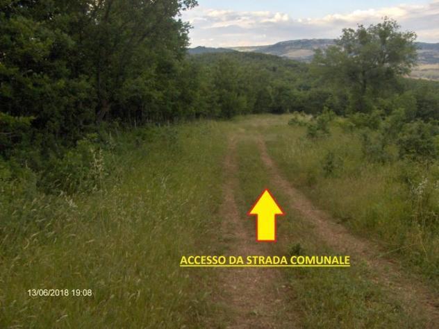 Terreno di 40000 m² in vendita a nusco