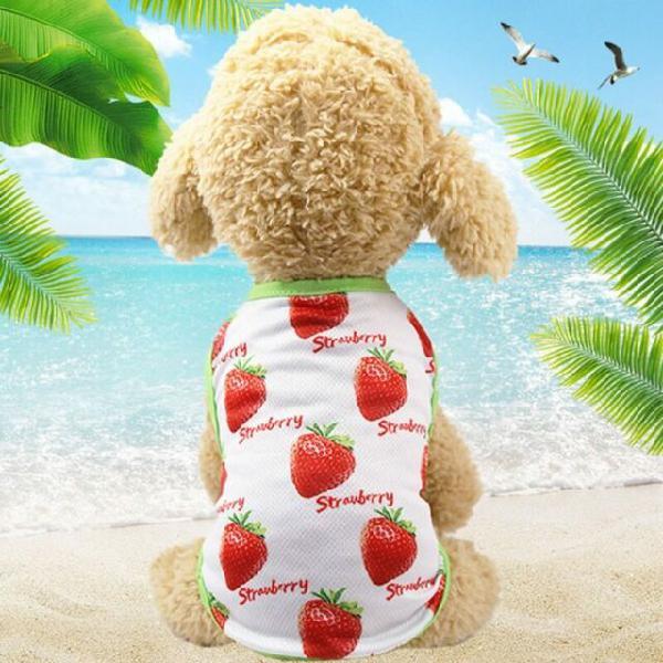 Maglietta per cani con stampe a tema frutta