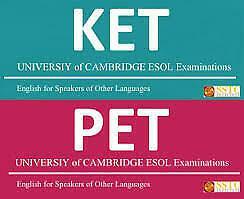 Ripetizioni di inglese. ket,pet e first