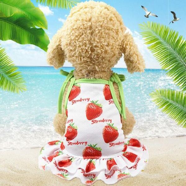 Vestitino per cani con stampe frutta