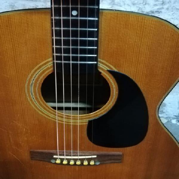 Chitarra acustica made in japan