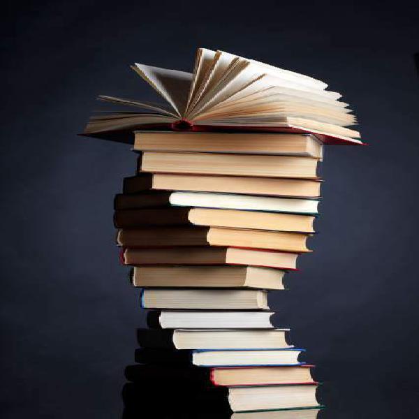 Consulenza per tesi di laurea/tesine