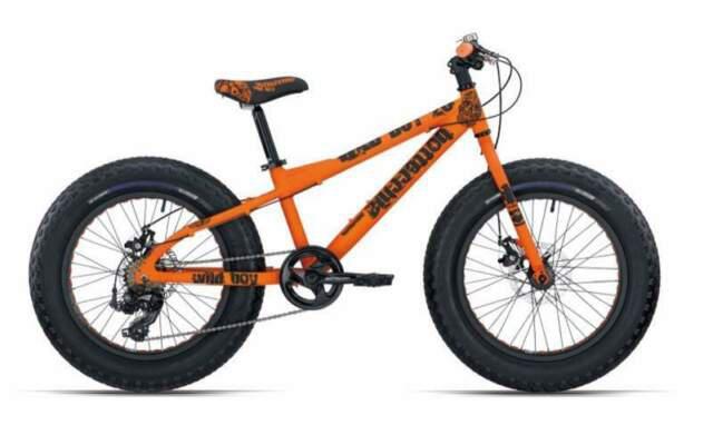 Fat bike bottecchia disk 20' nuove