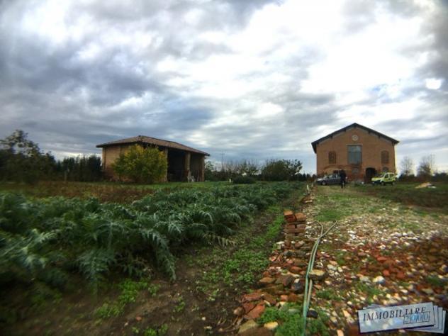 Terreno di 5000 m² in vendita a san giorgio di piano