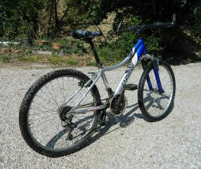Bicicletta mountain bike per ragazzo carnielli