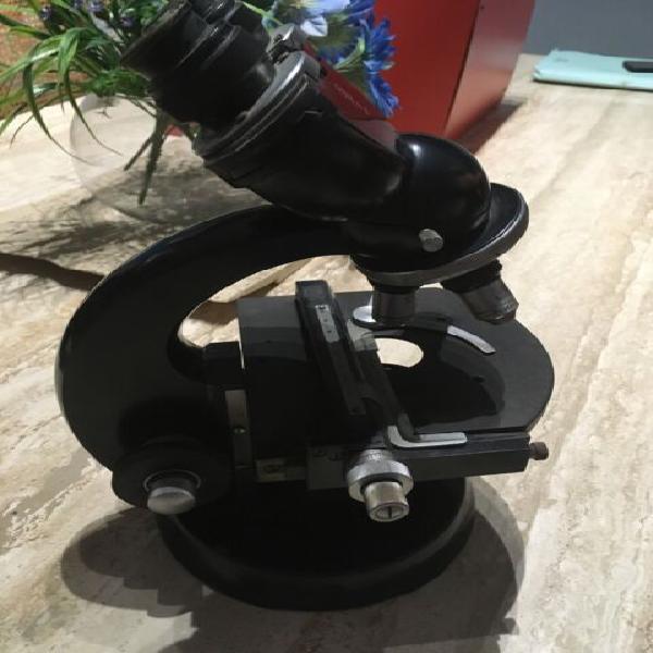 Microscopio ottico binoculare carl zeiss