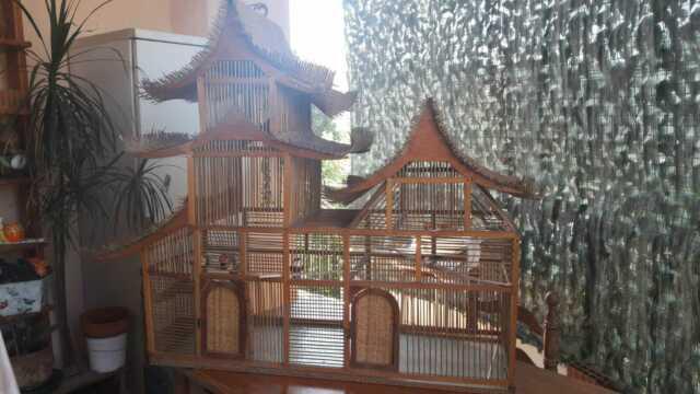 Voliera gabbia per uccelli
