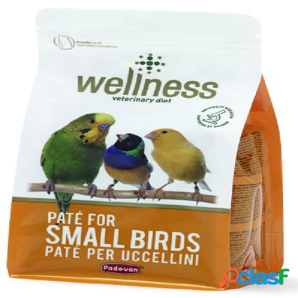 Padovan wellness pate' small birds gr 600 (pastoncino per uccelli)