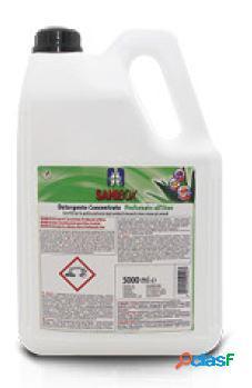 Sanibox igienizzante profumato ml 5000 all'aloe