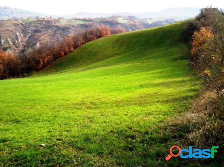 14 ettari (50 biolche) di terreni - 45.000EURO.
