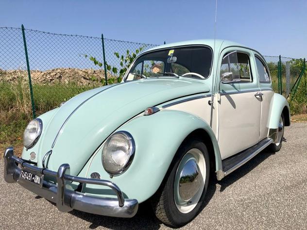 Volkswagen - maggiolino 6v - 1964