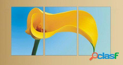 3 quadri moderni stampa digitale calla giallo