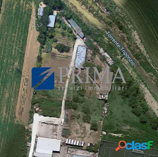 231sq - chiaravalle - lotti agricoli