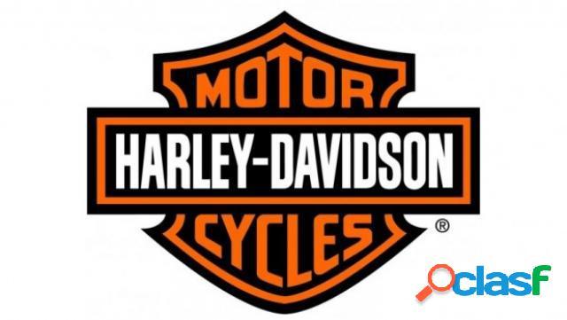 Harley-davidson vrscr street rod benzina in vendita a giugliano in campania (napoli)